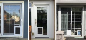 Benefits of Installing A Pet Door for Your Dog or Cat